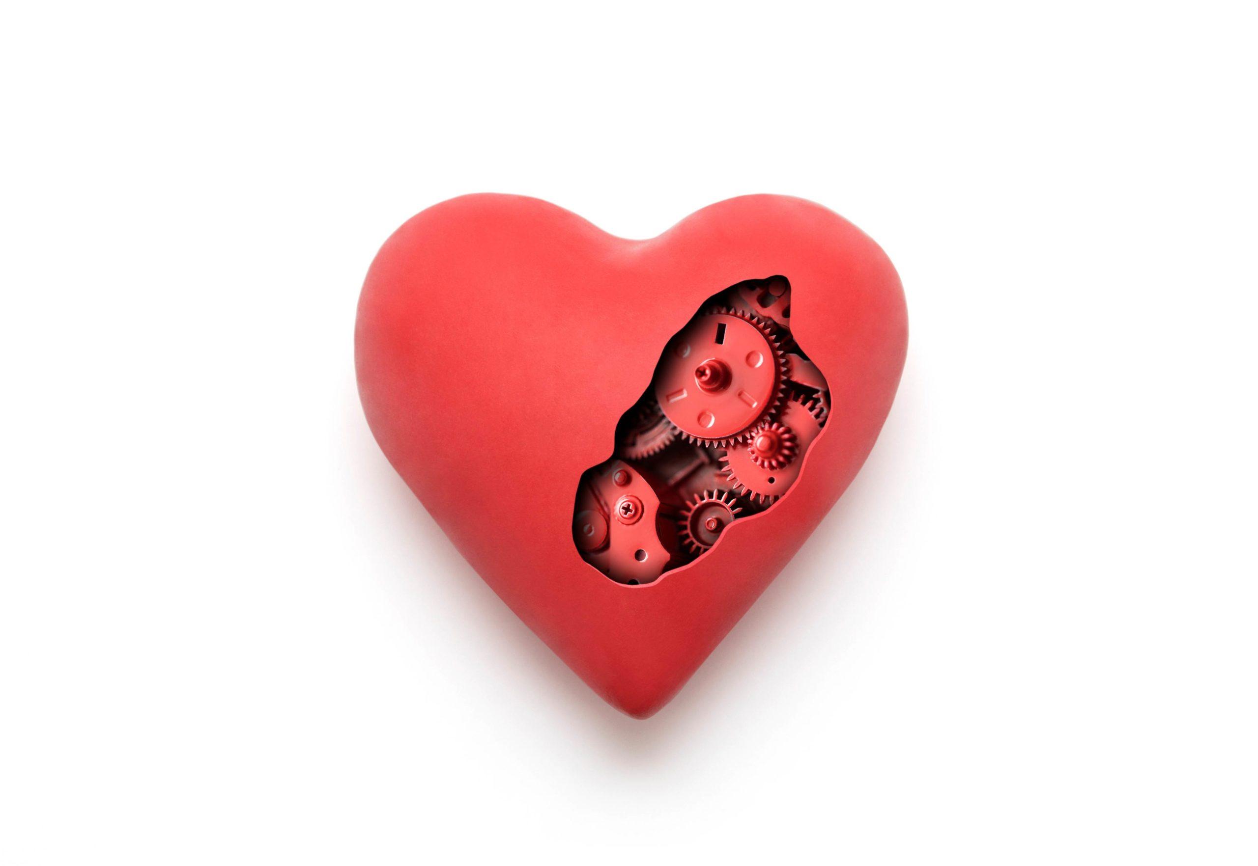 Heart mechanical design