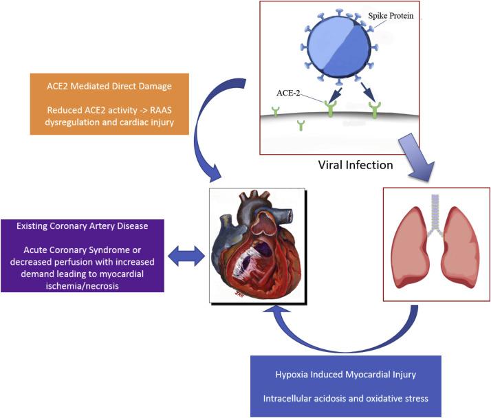 gr1 - Impact Of COVID-19 On Heart Health